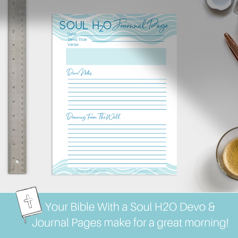 soul h2o journal pages